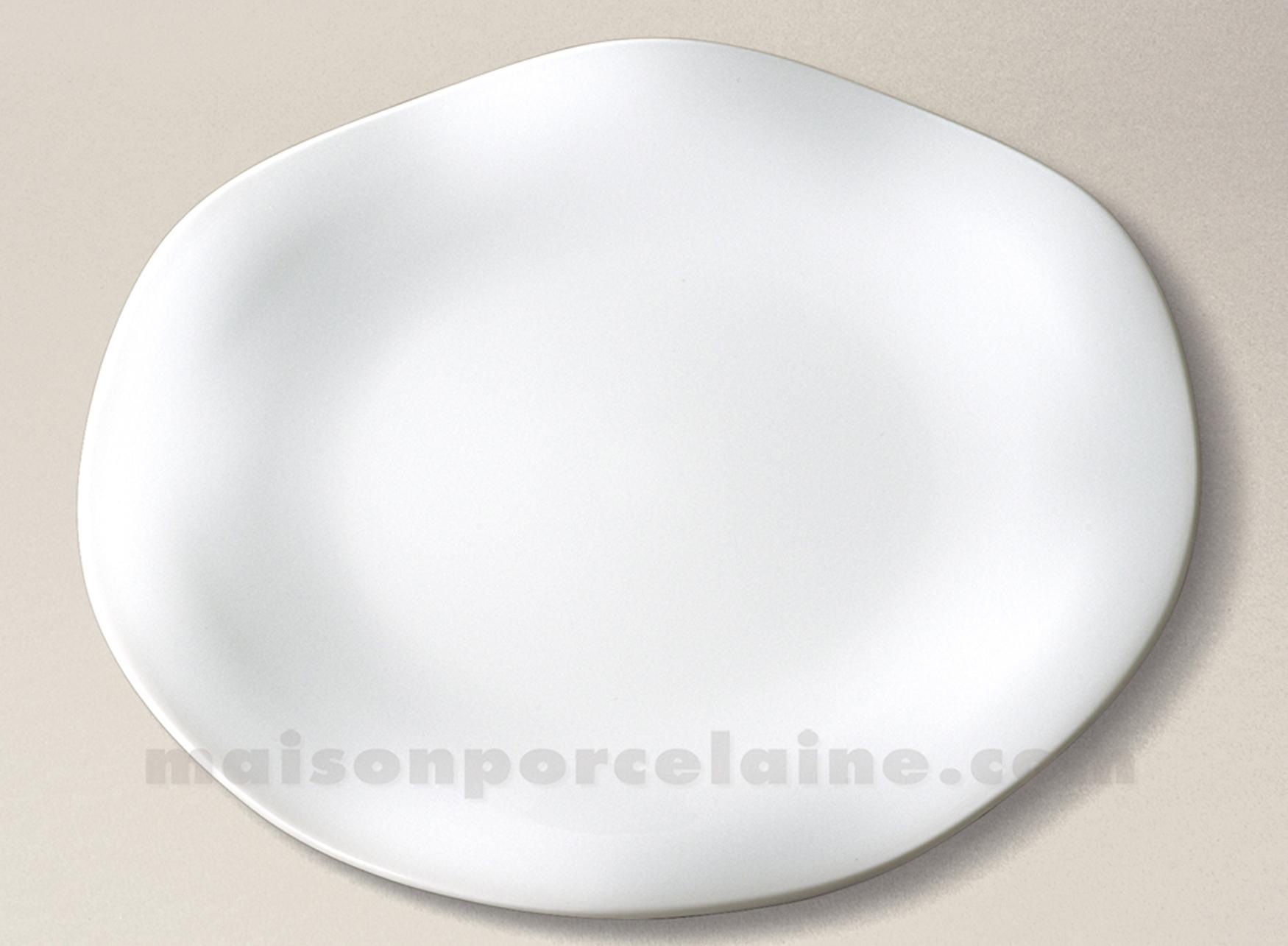 Assiette presentation limoges porcelaine blanche gala d32 maison de la porc - La porcelaine blanche ...
