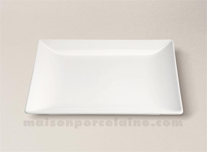 Assiette Carree Plate Gres Professionnel 24x24x2 5cm